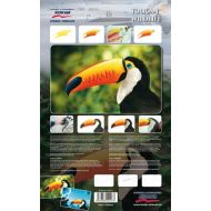 H&S Toucan Willife Stencils 410131