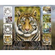 H&S Tiger Wildlife stencil