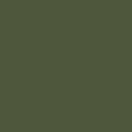 ACRN18 - Olive Green BS220 Satin finish 14ml.