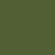 ARB07 - Middle Bronze Green BS381C 23 Matt finish 14ml.