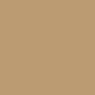 ARG03 - Afrika Corps Tan Yellow (RAL 8020) Satin finish 14ml.