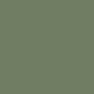 ARIT01 - Grigio Verde Chiaro (Light Grey Green) Matt finish 14ml.